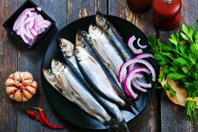 Caaf Distribution Fish & Seafood – Receive 10% Discount – Fish & Seafood Store